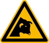 Warnzeichen, Warnung vor Stier W034 - ASR A1.3 (DIN EN ISO 7010)