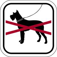 Hinweisschild, Hunde verboten, Aluminium/Folie, 200 x 200 mm